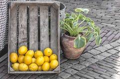 Una caja de madera con los limones imagen de archivo