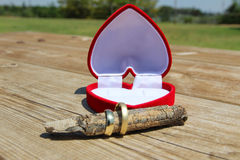 Una caja roja del terciopelo con un par de anillos de bodas del oro Imágenes de archivo libres de regalías