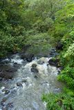 Una cala a lo largo del camino a Hana Maui Hawaii Imagen de archivo libre de regalías