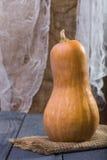 Una calabaza anaranjada entera grande Imagen de archivo