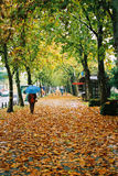 Una caminata bajo el paraguas Fotos de archivo libres de regalías