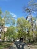 Una caminata en el parque Fotografía de archivo libre de regalías