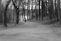 Una caminata en el parque Foto de archivo
