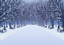 Una caminata en el parque del invierno ilustración del vector