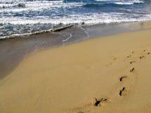 Una caminata en la playa Imagen de archivo libre de regalías