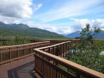 Una camminata d'Alasca pacifica Fotografie Stock