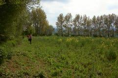 Una camminata nel paese Fotografia Stock Libera da Diritti