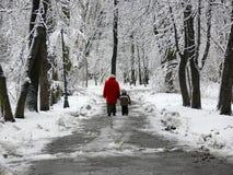 Una camminata nella sosta Fotografie Stock