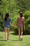 Una camminata nella sosta Fotografia Stock