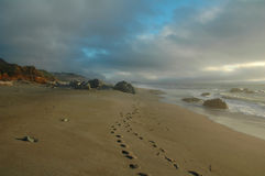Una camminata sulla spiaggia fotografia stock libera da diritti