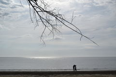 Una camminata sulla spiaggia immagine stock