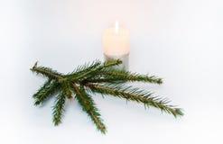 Una candela ed alberi di Natale Fotografia Stock