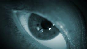 Una cantidad macra del ojo del centelleo de un ser humano bajo luz de una antorcha almacen de video