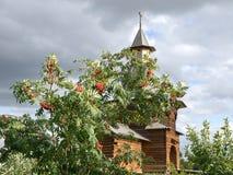 Una cappella di legno con l'albero della sorba in Kolomenskoye a Mosca fotografie stock libere da diritti