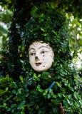 Una cara en las hojas verdes Imágenes de archivo libres de regalías