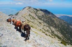Una caravana en el monte Olimpo Fotografía de archivo libre de regalías