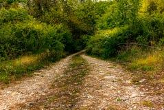 Una carretera con curvas sola en las colinas de Toscana Imágenes de archivo libres de regalías
