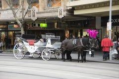 Una carrozza a cavalli sulla via a Melbourne Fotografia Stock