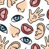 Una carta da parati di cinque sensi royalty illustrazione gratis