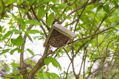 Una casa de abeja Imágenes de archivo libres de regalías