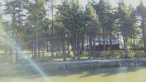 Una casa de madera vieja para el resto está en el agua vídeo Acumule cerca de la orilla en el fondo del árbol, naturaleza metrajes