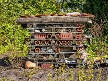 Una casa del insecto del jardín Foto de archivo