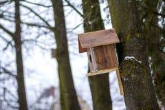 Una casa di legno per gli uccelli sull'albero nel posto della foresta per alimentare e trovare alimento nell'orario invernale per Fotografia Stock Libera da Diritti