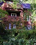 Una casa nella foresta in autunno immagini stock libere da diritti