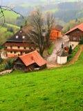Una casa nella foresta nera in Germania immagine stock