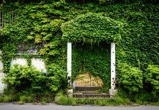 Una casa por completo de hojas verdes Imagen de archivo libre de regalías