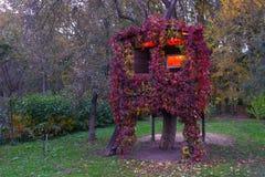 Una casa su un albero Fotografie Stock