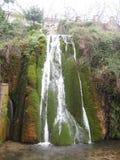 Una cascada con la vegetación enorme bajo ella Imagen de archivo