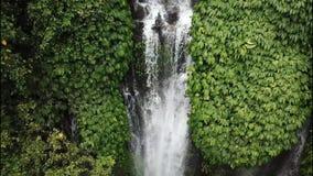 Una cascada en una selva tropical, el agua baja a una profundidad de 70 metros Vista delantera de la cascada del abejón almacen de metraje de vídeo