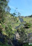 Una cascada hermosa en el bosque foto de archivo