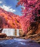 Una cascada hermosa en la visión infrarroja Fotos de archivo libres de regalías