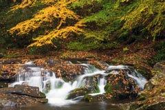 Una cascada hermosa en parque nacional de la montaña ahumada Foto de archivo libre de regalías