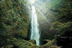 Una cascada hermosa y hermosa es tal tranquilidad que consigo de esta naturaleza Imágenes de archivo libres de regalías
