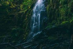Una cascada mágica en Oregon Imágenes de archivo libres de regalías