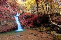Una cascada sedosa hermosa que cae abajo de las rocas cubiertas de musgo en una charca en un barranco secreto Imagen de archivo