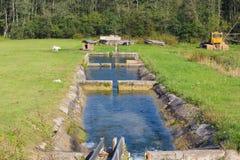 Una cascata dei bacini idrici per il pesce Immagine Stock