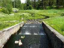 Una cascata di un fiume in un parco di estate Fotografia Stock Libera da Diritti