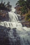 Una cascata lattea Fotografia Stock