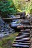 Una cascata nel paradiso di slovacco del parco nazionale Fotografie Stock