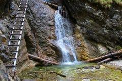 Una cascata nel paradiso slovacco Immagine Stock