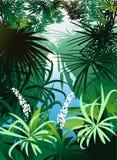 Una cascata nella giungla Immagini Stock Libere da Diritti