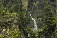 Una cascata in una roccia fra gli alberi verdi immagine stock