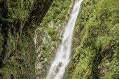 Una cascata selvaggia nelle rocce con erba immagine stock