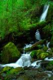Una cascata serica Fotografia Stock