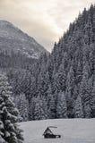 Una casetta in montagne polacche di Tatra nell'inverno Immagine Stock Libera da Diritti