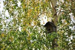 Una casetta per gli uccelli di incastramento, fatta dalle mani umane immagine stock libera da diritti